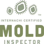 Mold Inspection Aurora
