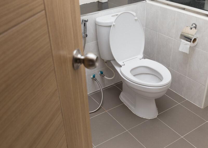 Toilet Inspection Aurora